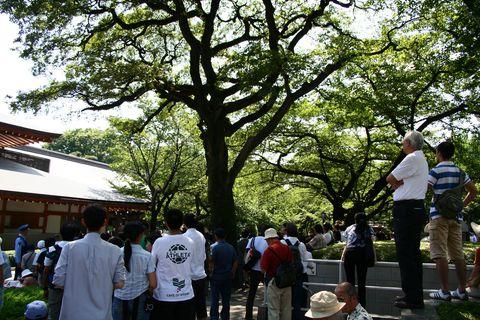 yasukuni0904.jpg